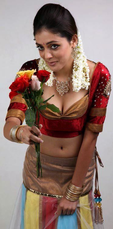 South indian aunties hot photos