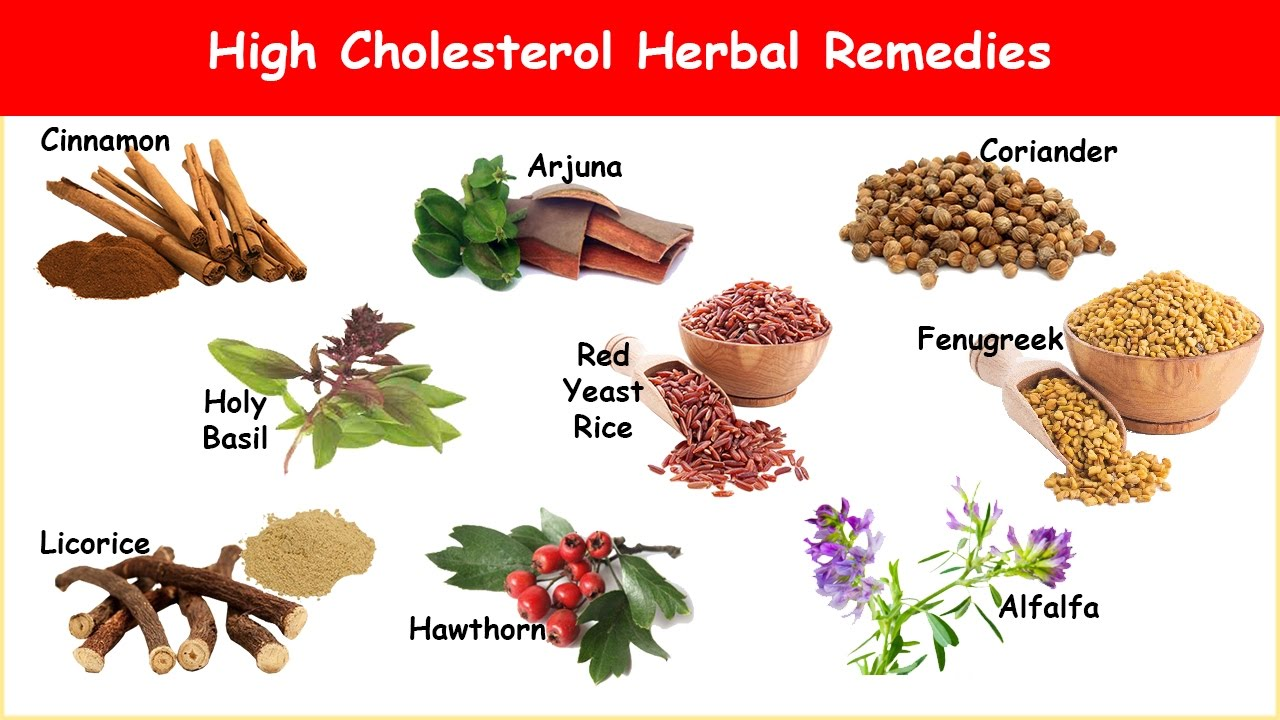 What to eat to increase hdl cholesterol