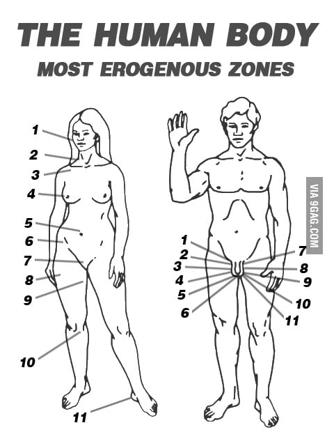 Erogenous zones on a man