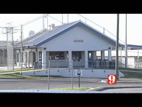 Ocala jail inmate search