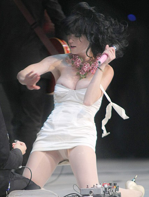 Katy perry pussy flash