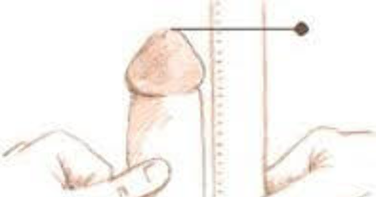 What is the proper way to measure a penis