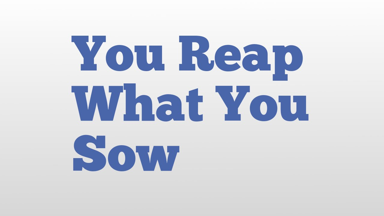 What does the saying reap what you sow mean