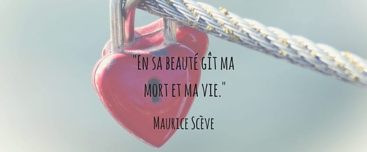 Translate my love to french