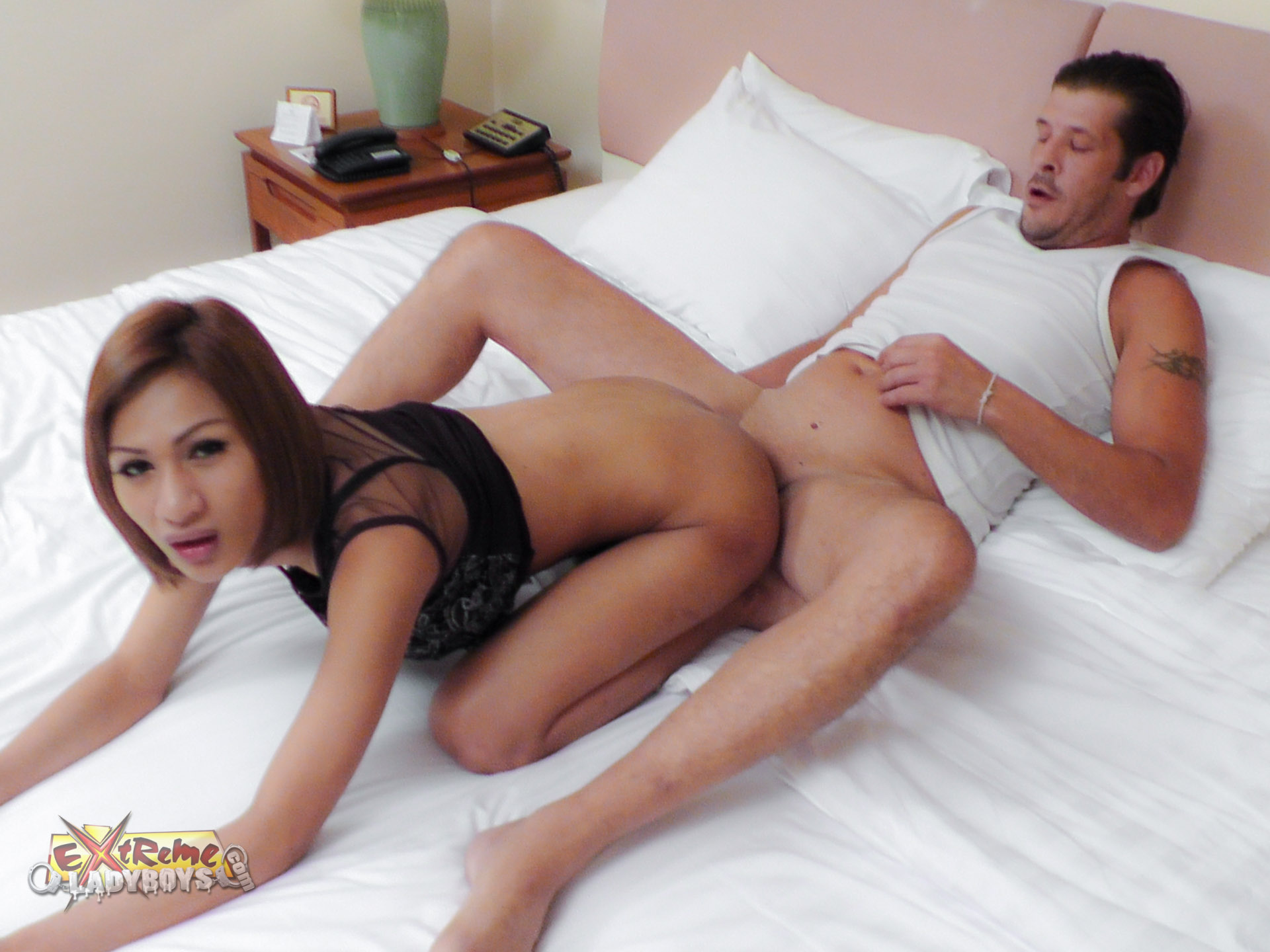Asian ladyboy sex pictures