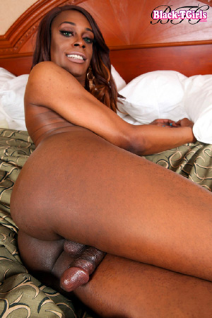 Big booty black transexual