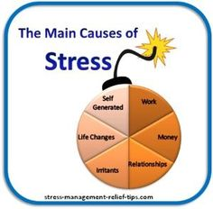 What is the main cause of stress