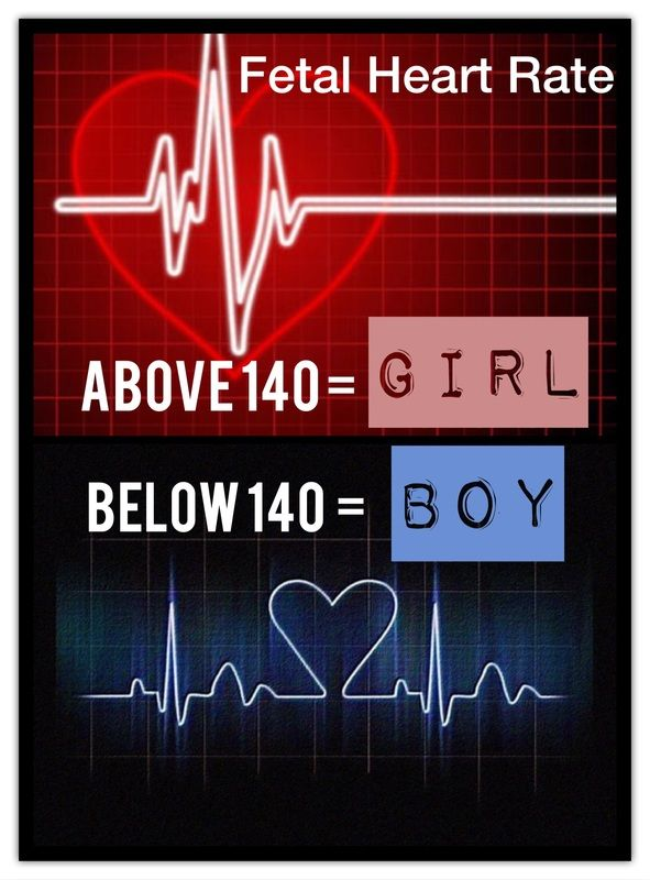 How does the heartbeat determine gender