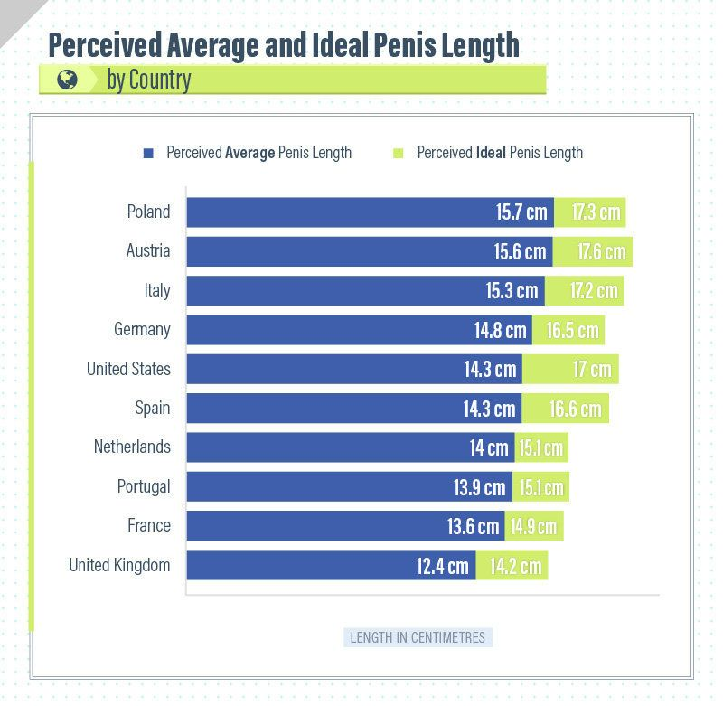 How big is an average sized penis