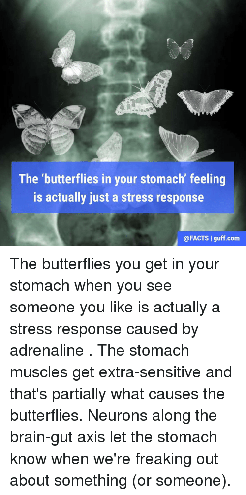What causes the butterflies in your stomach