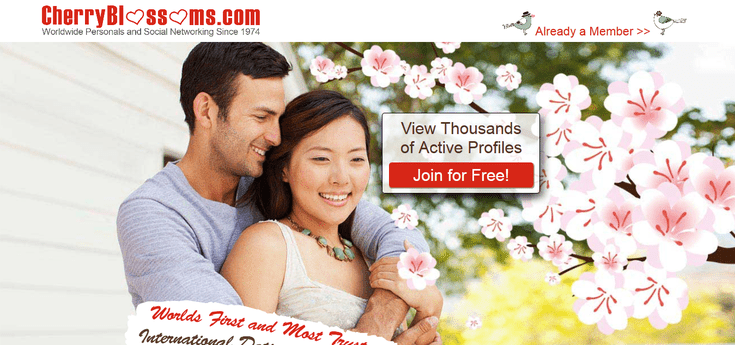 Cherry blossoms online dating site