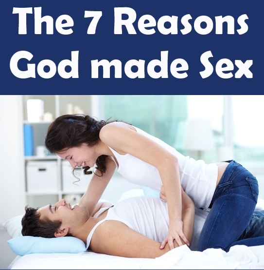 People having sexual intrcourse